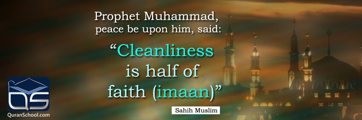 essay on importance of cleanliness in our life